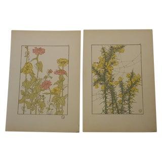 Art Nouveau Botanicals Prints - Pair