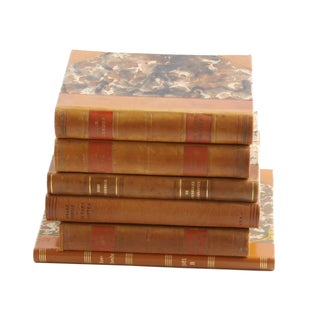 Vintage Leather Bound Books - Set of 6