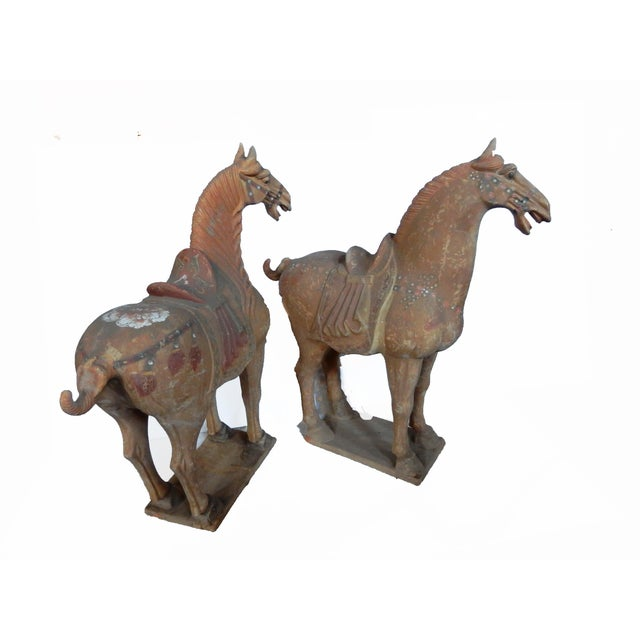 Tang Dynasty-Style Standing Horses - A Pair - Image 6 of 8