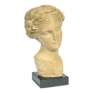 Classical Greek Bust