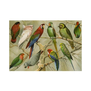 Antique 'The Birds' Archival Print