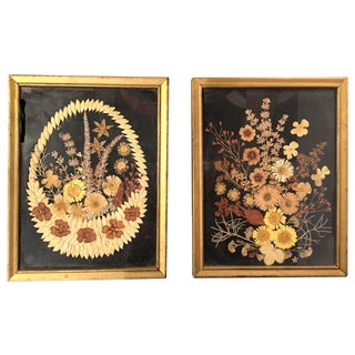 Early Dried Botanical Art Pieces - A Pair