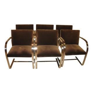 Brno Flat Bar Polish Stainless Steel & Brown Velvet Regency Dining Room Chairs - Set of 6