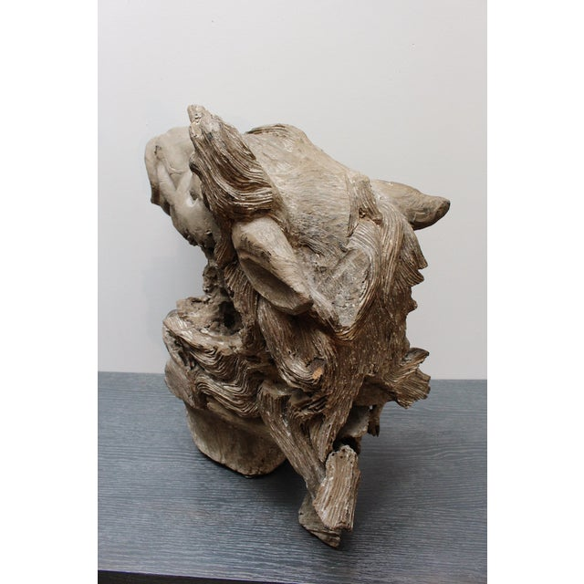 Hand Carved Bust of Horse Head in Wood - Image 5 of 11