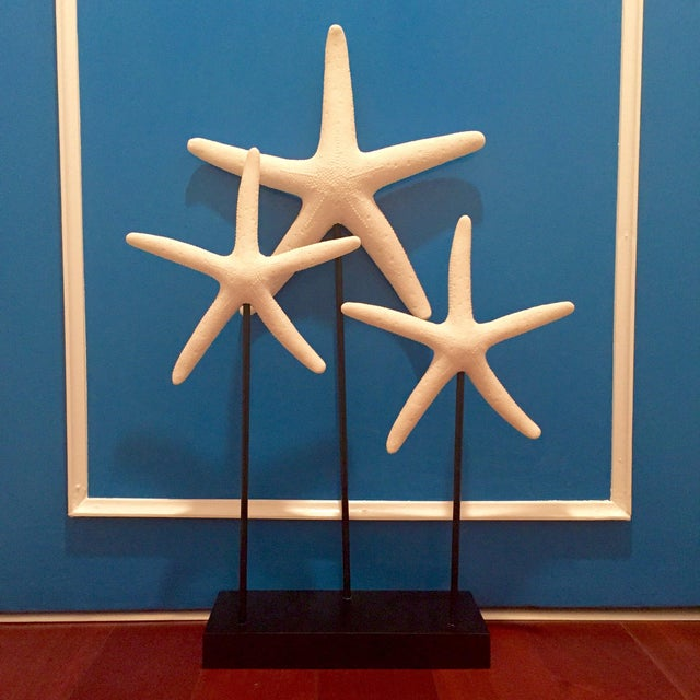 Decorative Starfish on Sandstone Base - Image 2 of 4