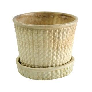 Vintage Petite Ivory Planter