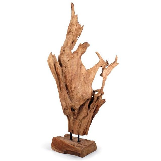 Asian Wild Teak Tree Root Sculpture - Image 8 of 9