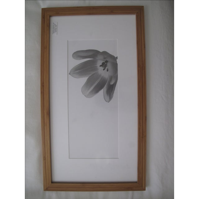 Picturewall Bamboo Frames - Set of 9 - Image 10 of 10