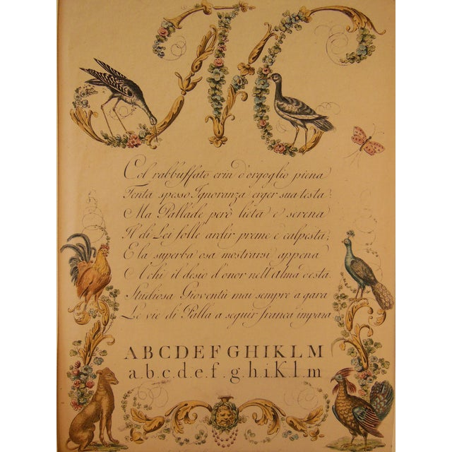 "Image of 1790s Illustrated Letter ""M"" Calligraphy"