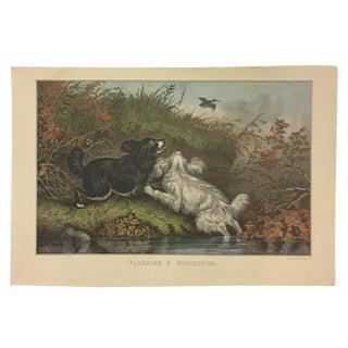 Black & White Cocker Spaniel Dogs Lithograph Print