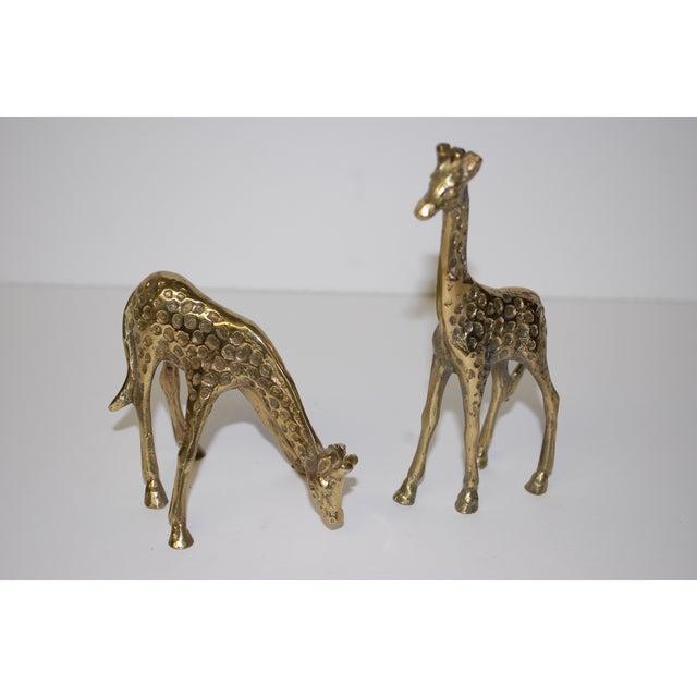 1950s Brass Giraffe Figurines - A Pair - Image 2 of 3