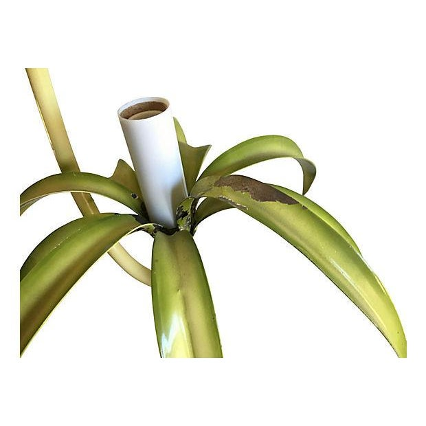 Italian Spider Plant Chandelier - Image 6 of 9