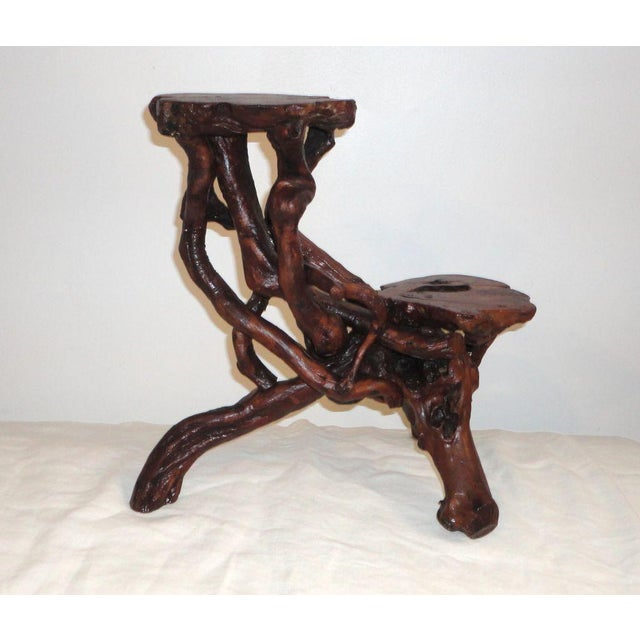 Image of Early 20th Century Root and Twig Tabletop Plant Stand