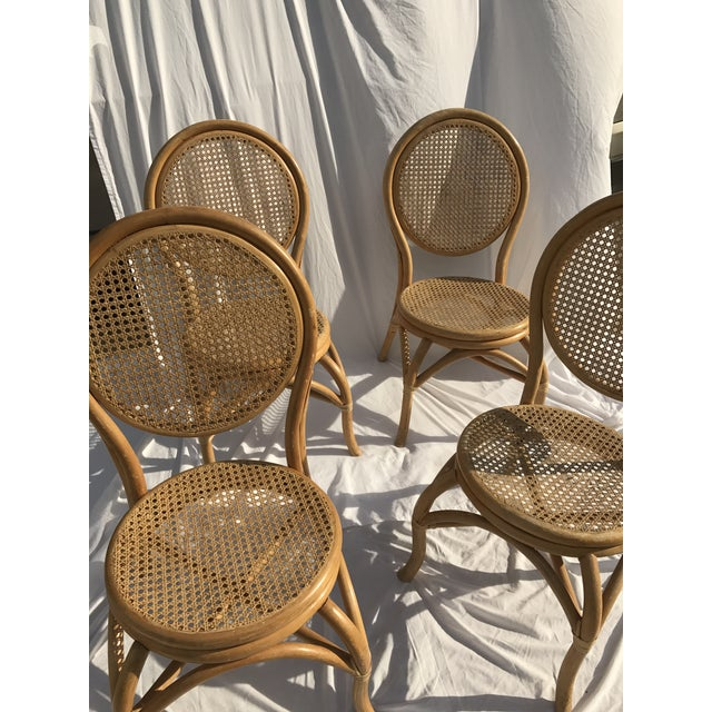 Sheet Cane Bentwood Bistro Chairs - Set of 4 - Image 9 of 10