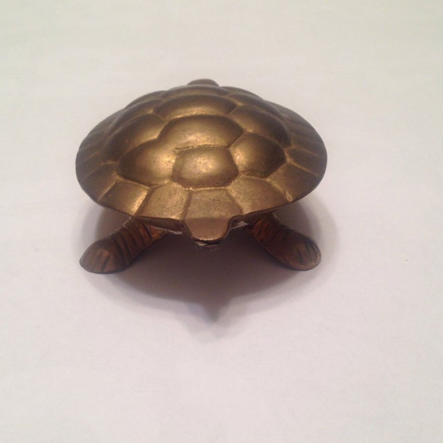 Image of Brass Turtle Box