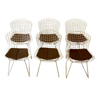 1960s Harry Bertoia for Knoll Wire Side Chairs- Set of 6