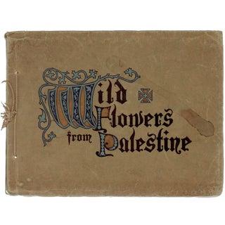Wild Flowers From Palestine Book by Harvey B. Greene
