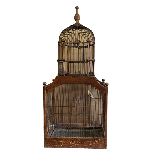 Image of Antique 19th Century Victorian Cupola Bird Cage