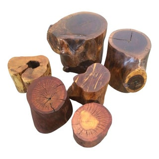 Wood Trunk Tables - Set of 6