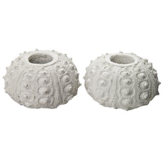 Cast Concrete Sea Urchin Candle Holders - A Pair