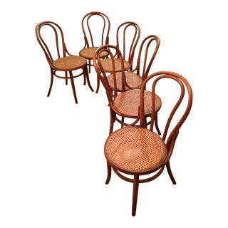 Antique Bentwood Cane Chairs - Set of 6