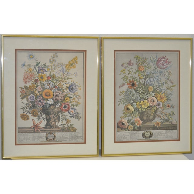 Vintage Hand Colored Botanical Prints - A Pair - Image 2 of 6