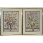Image of Vintage Hand Colored Botanical Prints - A Pair