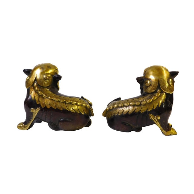 Chinese Bronze Golden Fengshui Foo Dogs - Pair - Image 4 of 6