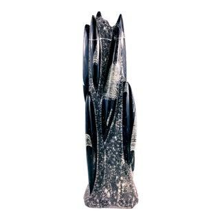 Orthoceras Fossil Centerpiece Sculpture