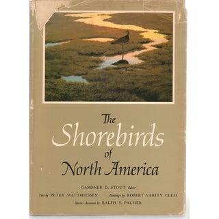 The Shorebirds of North America, Peter Matthiessen
