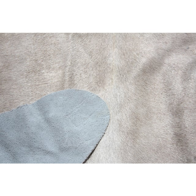 Image of Champagne Brazilian Cowhide - 6′ × 6′3″