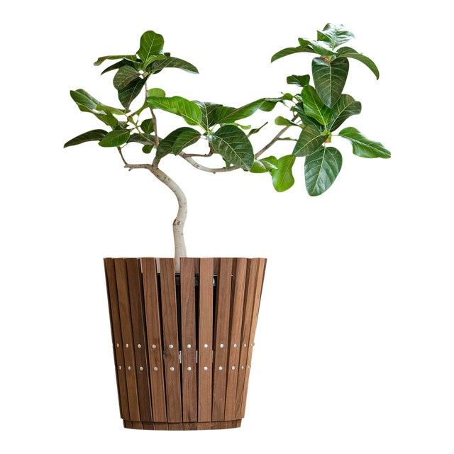 Customizable Plantum American Hardwood Modular Planter Cover - Image 1 of 7