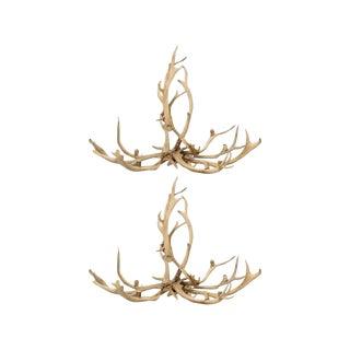 Pair of Red Deer Antler Chandeliers