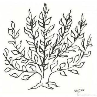 "Henri Matisse ""Le Buisson"" Serigraph"