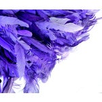 Image of African Bamileke Tribe Feather Juju Hat