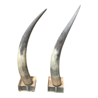 Vintage Tusk/Horn Decorations- A Pair