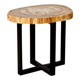 Exquisite 19th Century Petrified Wood Side Table With Custom Steel Base