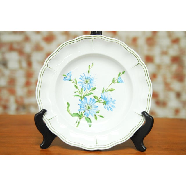 """Set of 66 French Luneville Hand-Painted Floral Dining Plates """"Rovina Epinal"""" - Image 7 of 11"""