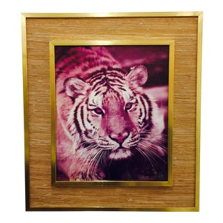 Vintage Tiger Photograph in Seagrass & Brass Frame