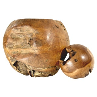 Teak Root Ball Accents - A Pair