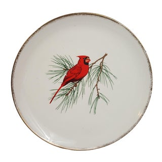 Red Cardinal Gold Rimmed Plate