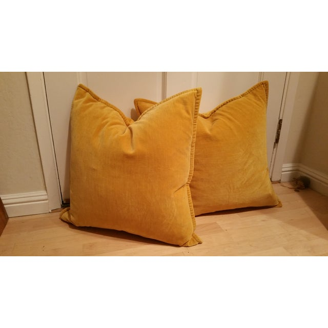 Image of Pottery Barn Yellow Velvet Down Pillows - A Pair