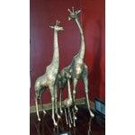 Image of Vintage Giraffe Family Statues - Set of 3