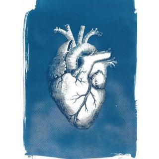 Heart Anatomy Vintage Illustration Cyanotype
