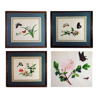 Circa 1800 Chinese Botanical Watercolor Paintings on Paper - Set of 4