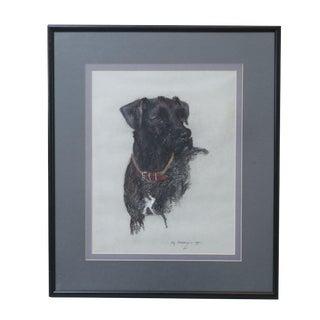 Labrador Retriever Original Pastel Drawing