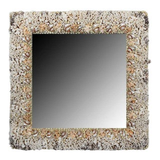Rare Coral and Turbo Sea Shell Mirror