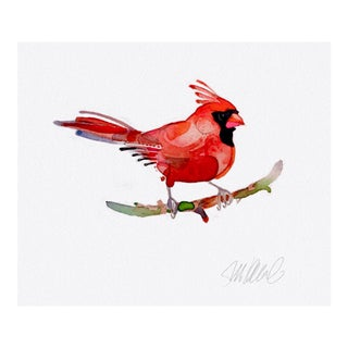 Premium Giclee Print of Red Cardinal