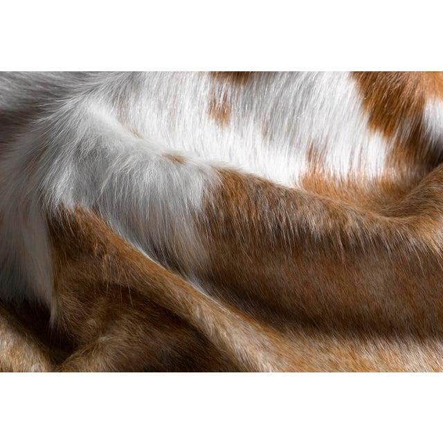 Brown & White Cowhide Rug - 6' X 7' - Image 2 of 2