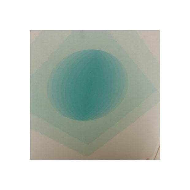 Can Partition of Time and Space, Framed Lithograph - Image 2 of 6